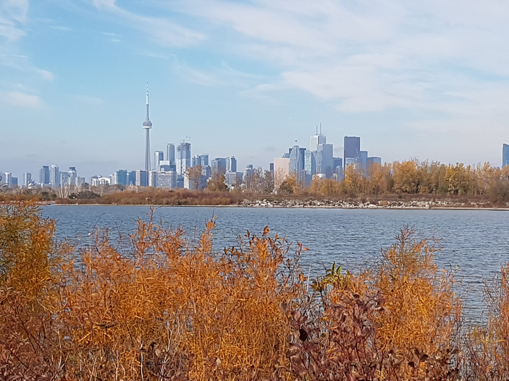 Toronto-11